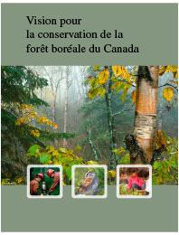 Vision pour la conservation de la forêt boréale
